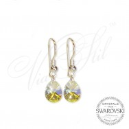 Crystal Circle Earrings AB